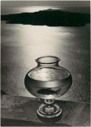 https://franceslivings.com/poetry/goldfish-bowl/herbert-list-goldfish-bowl-santorini-greece-1937-gelatin-silver-print